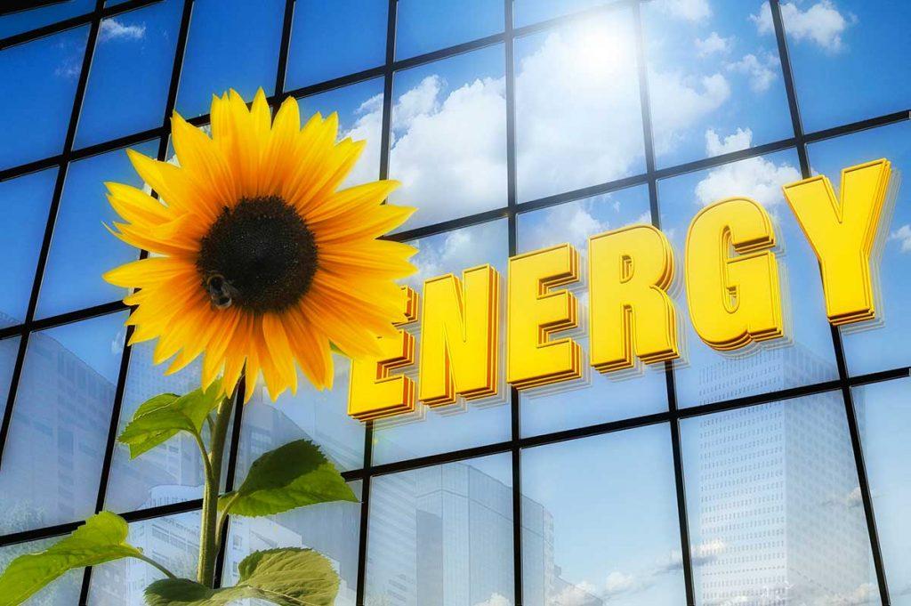 fotovoltaico Cagliari pannelli solari assistenza servizio pulizia Rebel